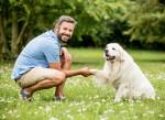 Un comportementaliste canin étudie un Golden Retriever