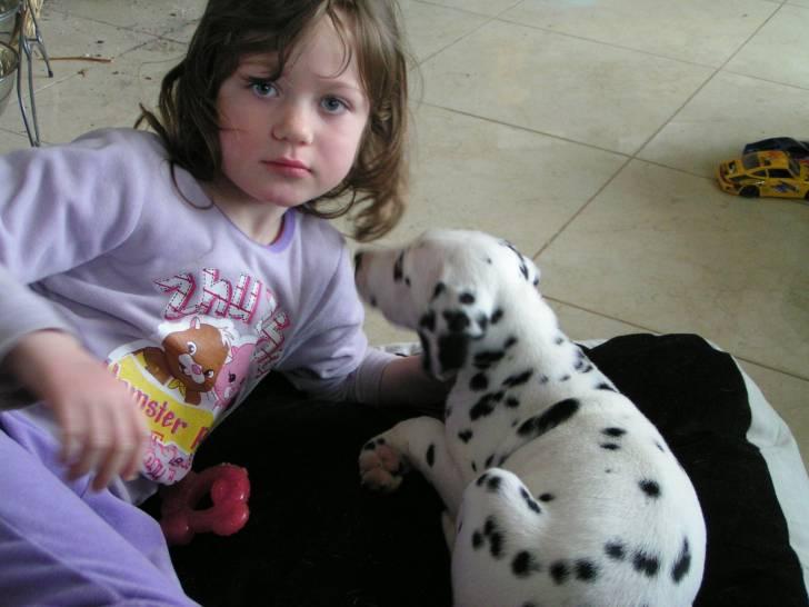 Ice Tea et ma fille - Dalmatien (2 mois)