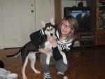 maya - Husky (7 mois)