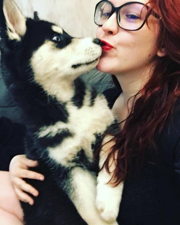 Eragon et moi - Husky Mâle (3 mois)