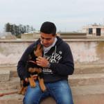 Chien LILI - Rottweiler Femelle (3 mois)