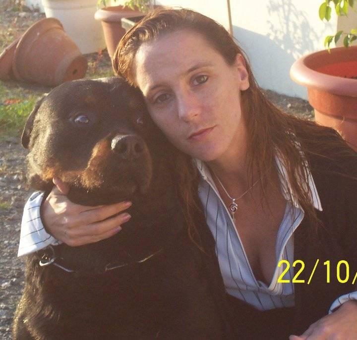 Thor - Rottweiler Mâle (9 ans)