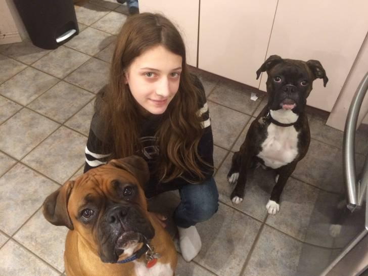 Aria , blue et moi - Boxer (1 an)