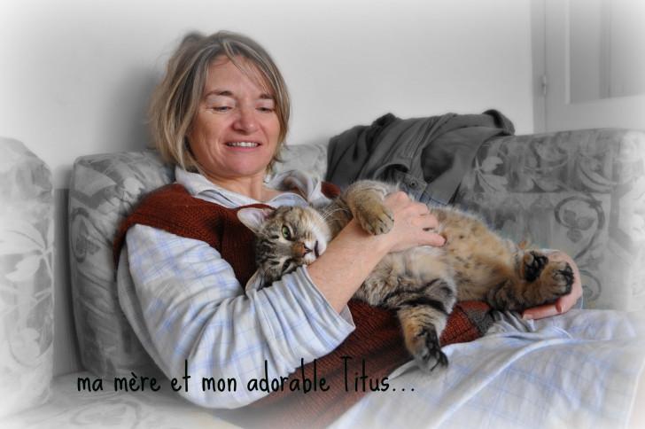Chat Titus(avec ma mère) - Mâle (1 an)