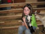 Peppy & Skipper - Chèvre Mâle