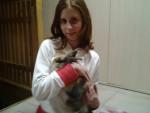 Lapin io e kiko - Mâle (3 mois)