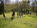 Red and me - Mâle (6 ans)