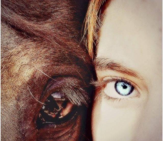 Me & Dexter - Mâle (5 ans)