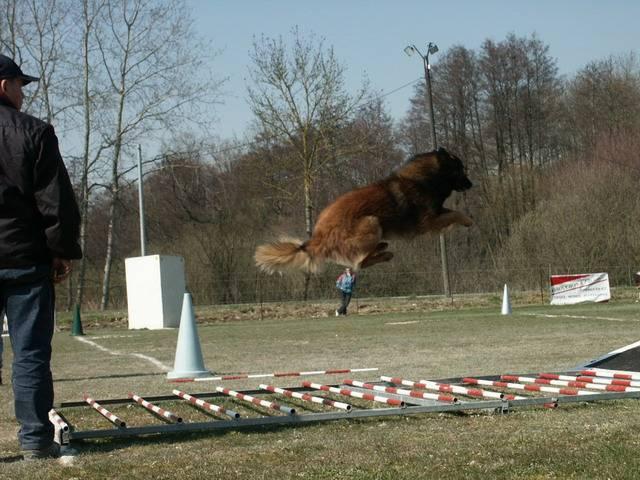 ça c'est un saut 4m50 pas mal non -