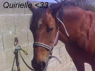 Quirielle - (6 ans)