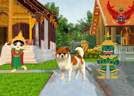 Vous allez craquer pour le Bangkaew de Thaïlande!