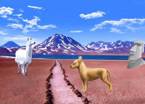 Adoptez un chien pas comme les autres : le chien nu Inca!